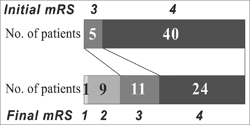 Figure 1: Distribution of initial and final modified Rankin Scale scores in the 45 patients who completed the postacute care program. mRS: modified Rankin Scale