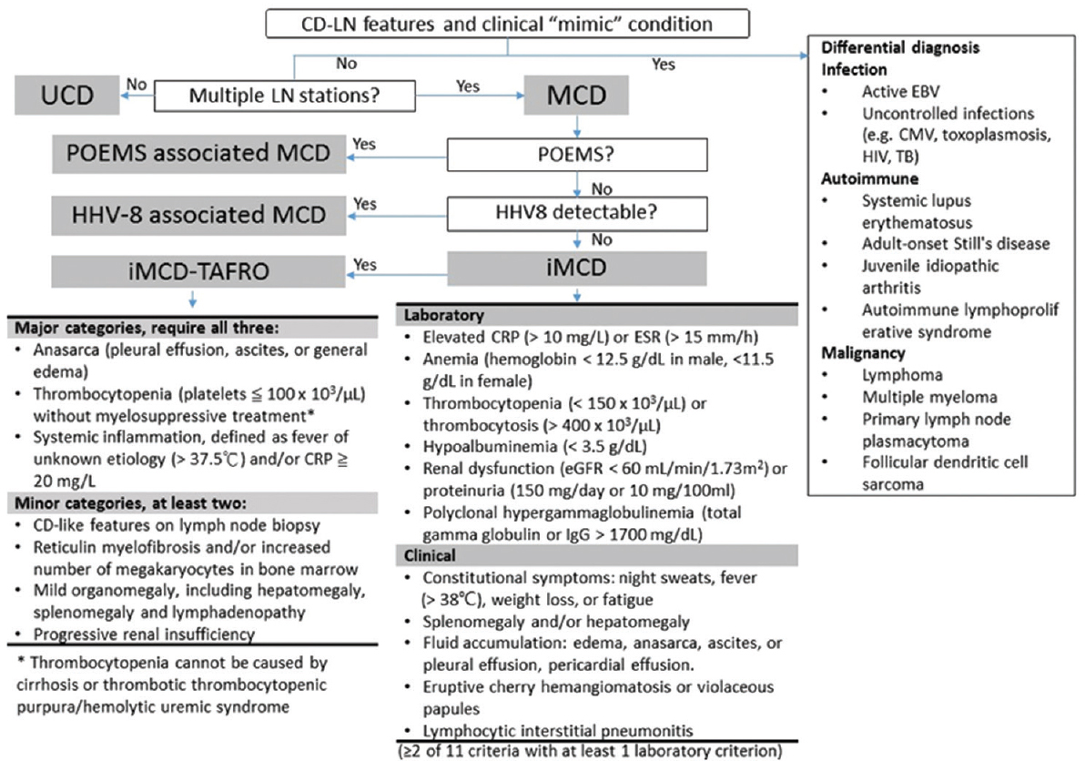 Figure 3: The working flowchart for diagnostic approach of CD-LN features. The major steps toward diagnosis include the number of LN stations, associated features of POEMS, and the concomitant HHV-8 infection. The diagnostic criteria for iMCD <sup>[12]</sup> and TAFRO syndrome <sup>[18]</sup> are provided. A differential diagnosis is listed on the right side. CD: Castleman disease, CMV: <i>Cytomegalovirus</i>, EBV: Epstein–Barr virus, HIV: Human immunodeficiency virus, HSV: Herpes simplex virus, iMCD: Idiopathic multicentric Castleman disease, POEMS syndrome: Polyneuropathy, organomegaly, endocrinopathy, monoclonal protein, and skin changes syndrome, TAFRO syndrome: Thrombocytopenia, Anasarca, Fever, Reticulin Fibrosis, and Organomegaly syndrome, TB, Mycobacterium tuberculosis, UCD: Unicentric Castleman disease